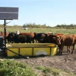 yellow-tank-remote-waterer